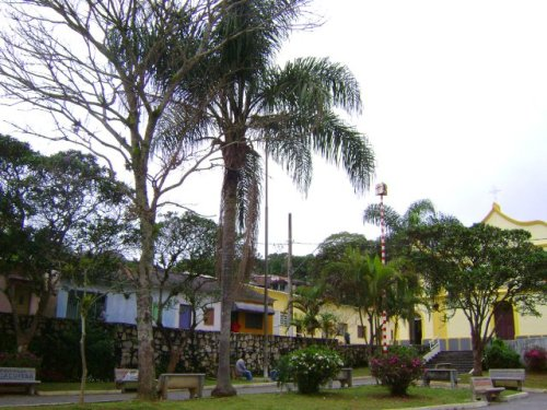 taiaçupeba